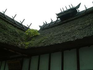 fukushima+008_convert_20101019151943.jpg