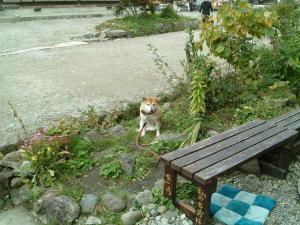 fukushima+023_convert_20101019152503.jpg