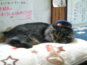 fukushima+041_convert_20101019180624.jpg