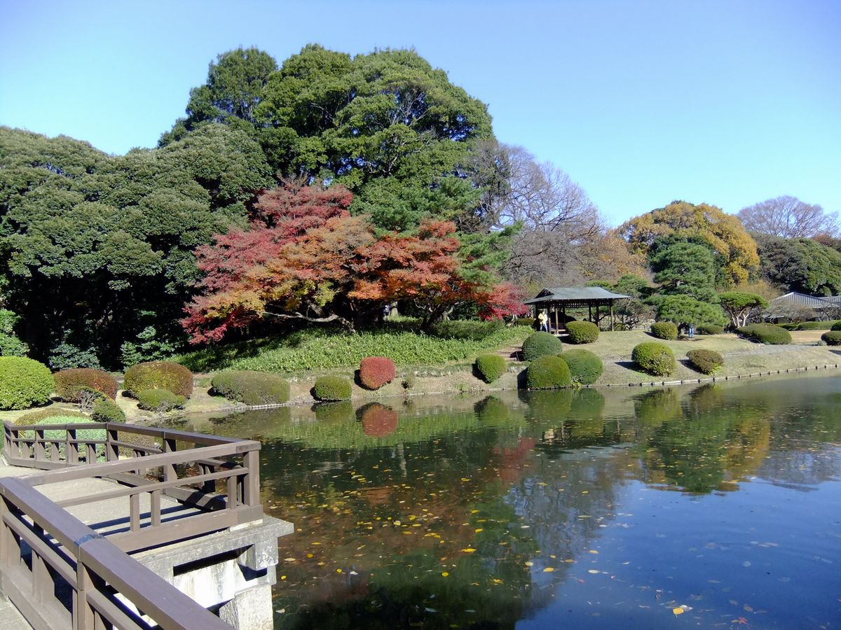 新宿御苑 9 SABOの東京名所寫真