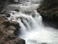 Lower Falls, 1 web, 5-7-11 002