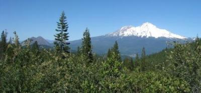 mt Shasta Black Butte 070410_0981