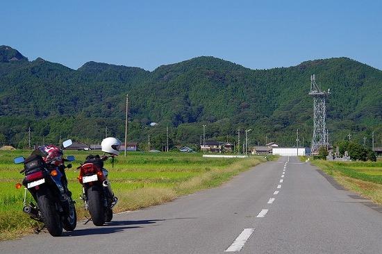 嶺岡中央林道 1