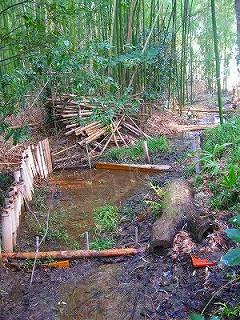 竹林の中の堰