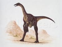deinocheirus.jpg