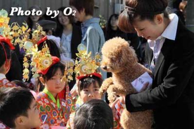 arikawa_togyo_2010_20.jpg