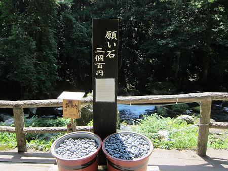 河津七滝 12