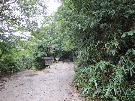 林道入り口 1