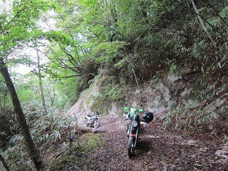 林道越路線 1