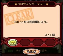ハロウィン品種改良_12