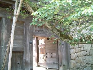 matsuyama+051_convert_20120530232755.jpg