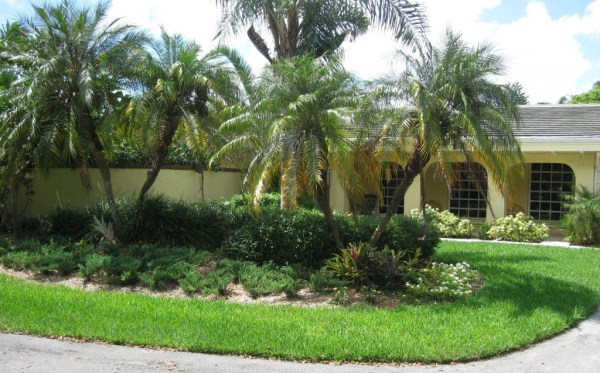 miami landscaping advantages of