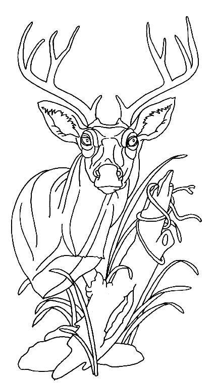 Woodwork Free Beginner Wood Carving Patterns PDF Plans