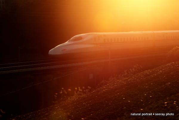 新幹線 700系 夕日