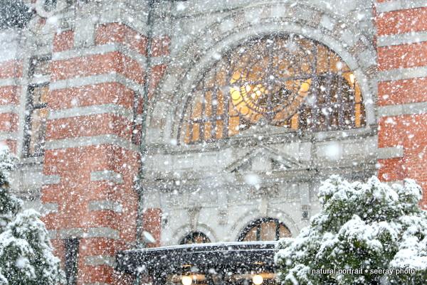 開講記念会館 横浜 雪