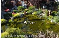 Small Garden Design Pond Design Factors to consider when ...