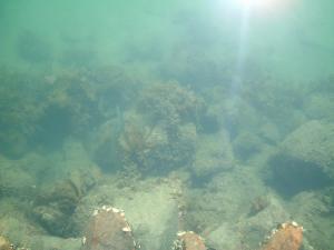 sydney2012+3-1+104_convert_20120925221511.jpg