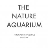THE NATURE AQUARIUM 板を戻しました&アクアスカイ経過報告。