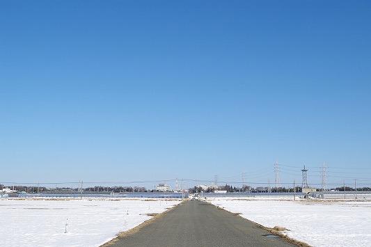 雪散歩 16
