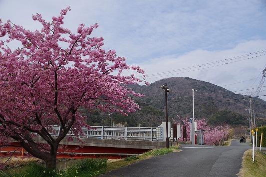 県道59号線 5