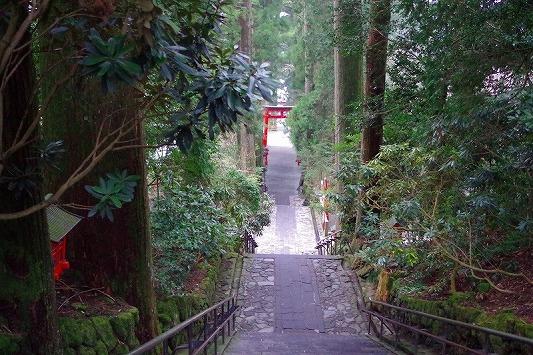 箱根神社 5