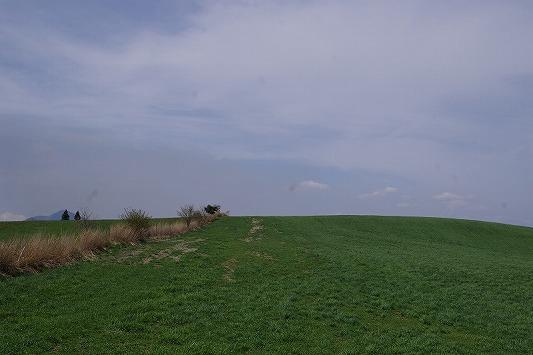 県道11号線 2