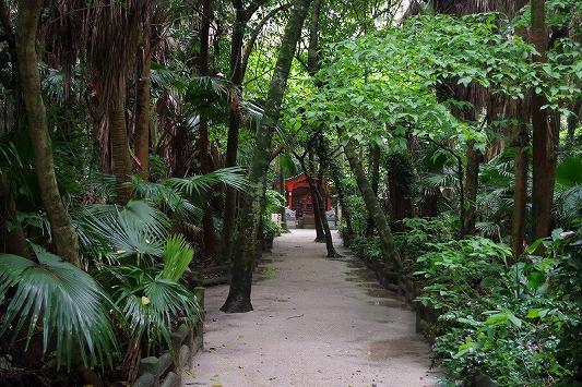 青島神社 7