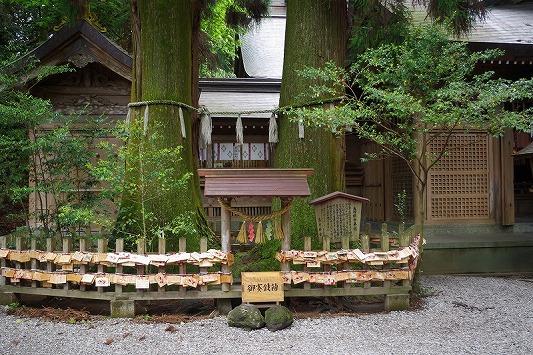 高千穂神社 4