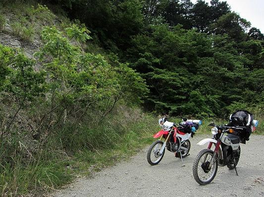 横尾林道 2