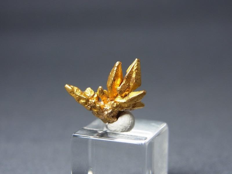 十字星の間 自然金結晶