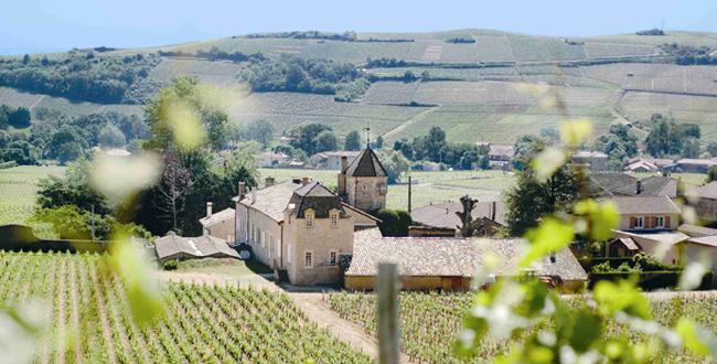 23596-650x330-autre-chateau-fuisse-pouilly-fuisse.png