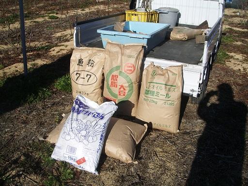 ブルーベリーの肥料作業です。 ベリーズファーム ヌマジリ 農園ブログ