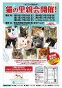 里親さんブログ.明日、8月28日 堺東にて「猫の里親会」開催!