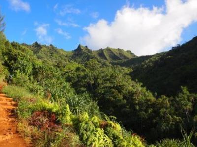 kauai hawaii napali