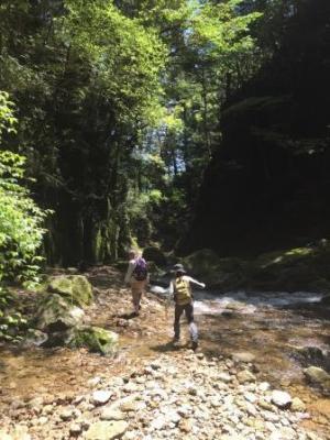 nachi SHINPI walk