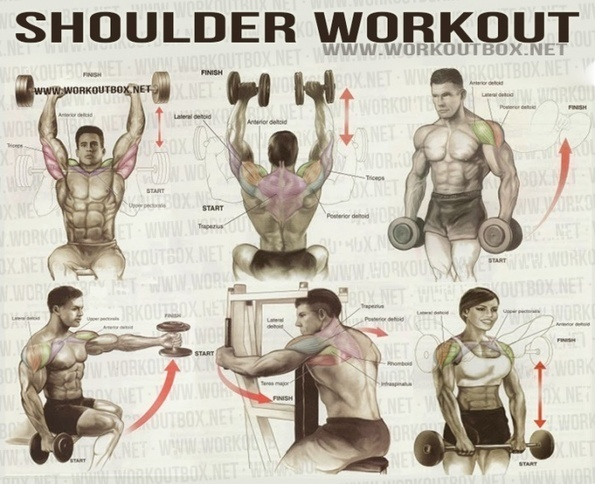 exercice épaules