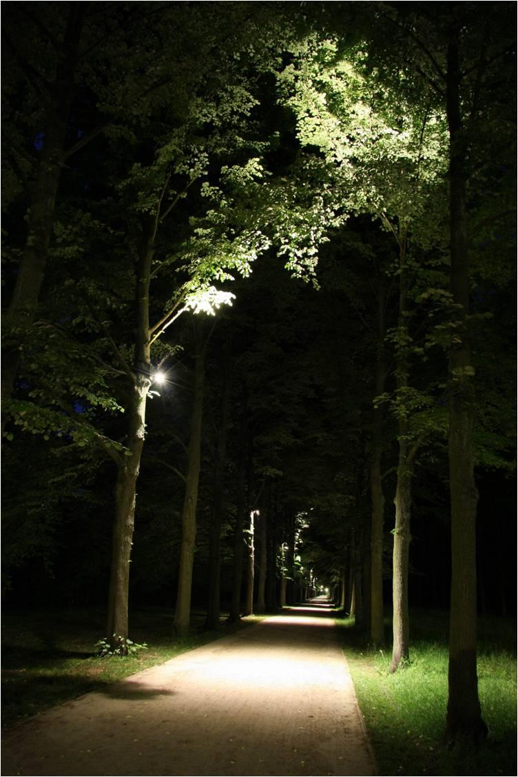Beleuchtungsplanung f r den franz sischen garten in celle lichtgestaltung - Licht fur garten ...