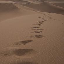 Wüstenfahrt: Spuren im Sand