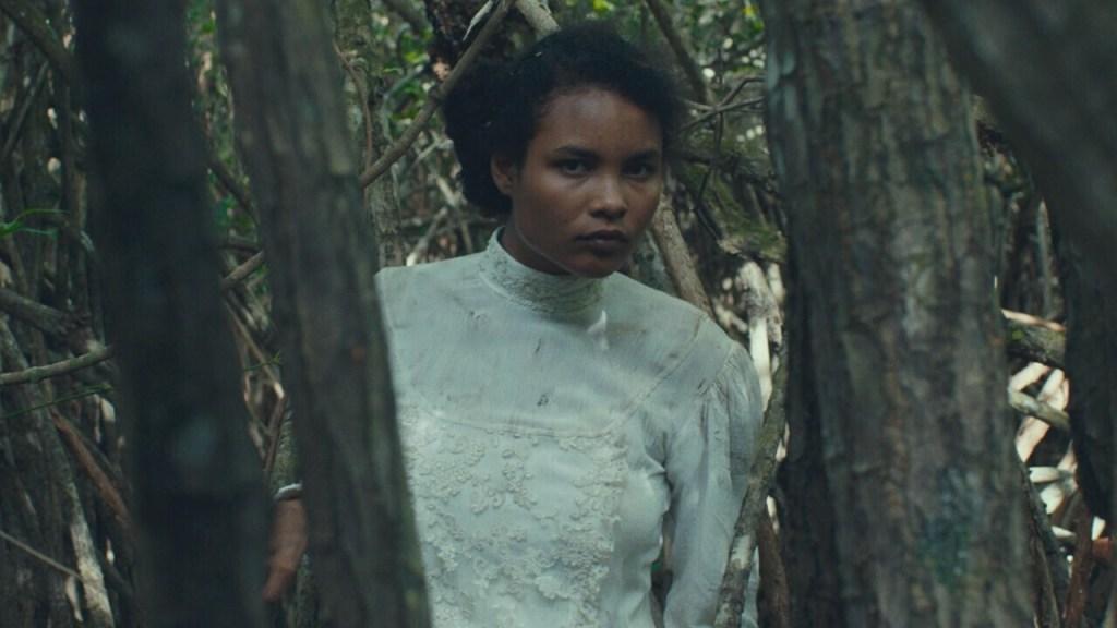 Trajik Orman Film Konusu, Yorumu ve İncelemesi