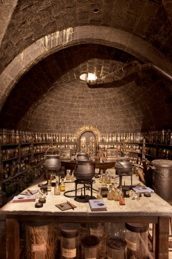 Potions - Studios Harry Potter