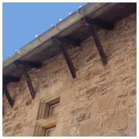 bord toit corbeaux bois