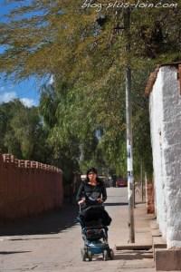 San Pedro de Atacama. Désert d'Atacama. Chili.