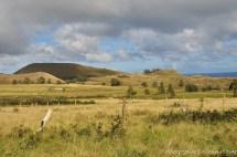 Des Européens ont exploité l'île avec des moutons, à la fin du XIXe siècle.