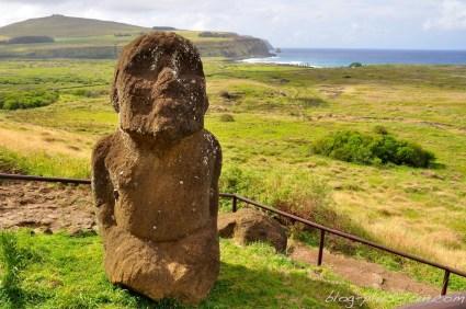 Un moai différent des autres, plus petit et replet.
