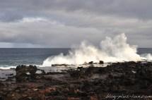 Vague sur la roche noire, à Rapa Nui.