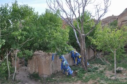 Les restes du temple au milieu des bouleaux.