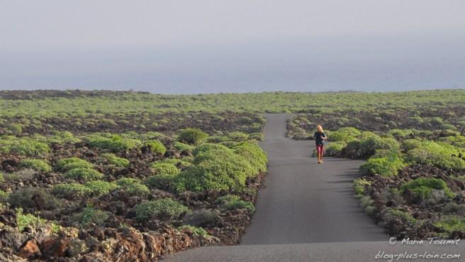 Dans le nord de Lanzarote (canaries)