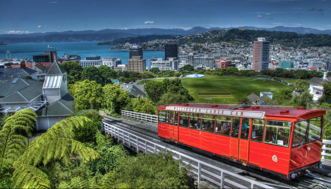 frogs-wellington-cable-car