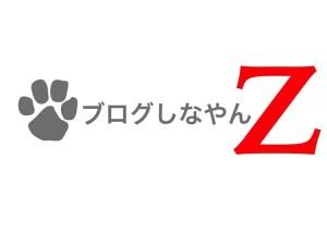 blog-shinayanz-logo