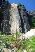 PalisadesCliff-narrow